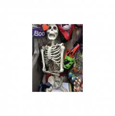 118633_1-Life-Size-Skeleton-Deco-1s.png