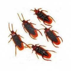 118642_1-Rubber-Cockroaches-Deco-10s.png